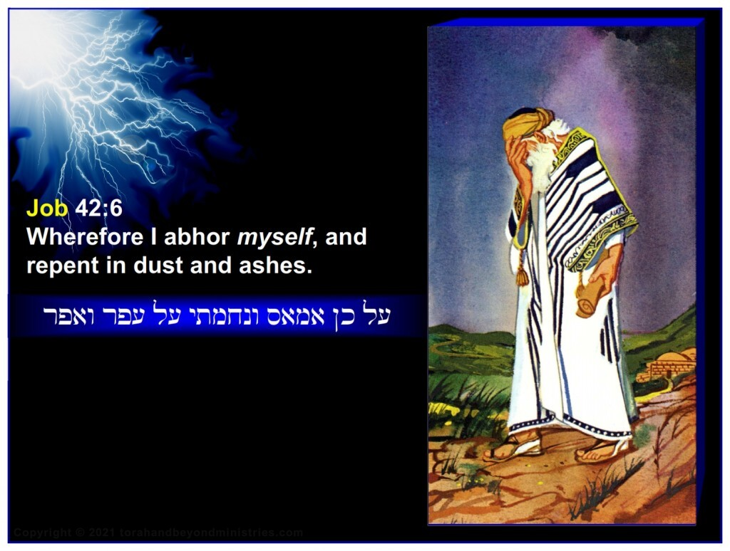 Job had no hope in his righteousness and said: Wherefore I abhor myself, and repent in dust and ashes.