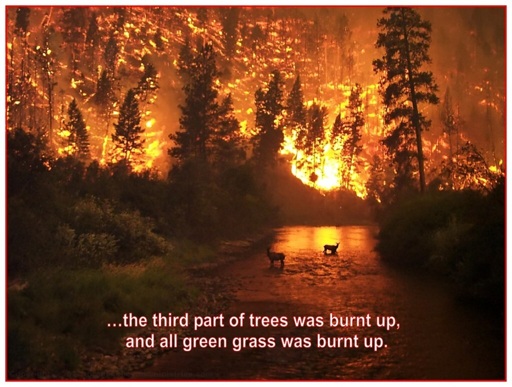 The ecological system of the Earth is severely damaged during this judgement.