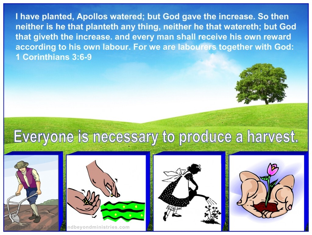 We are all very important in the harvest. Everyone is necessary to produce a harvest.