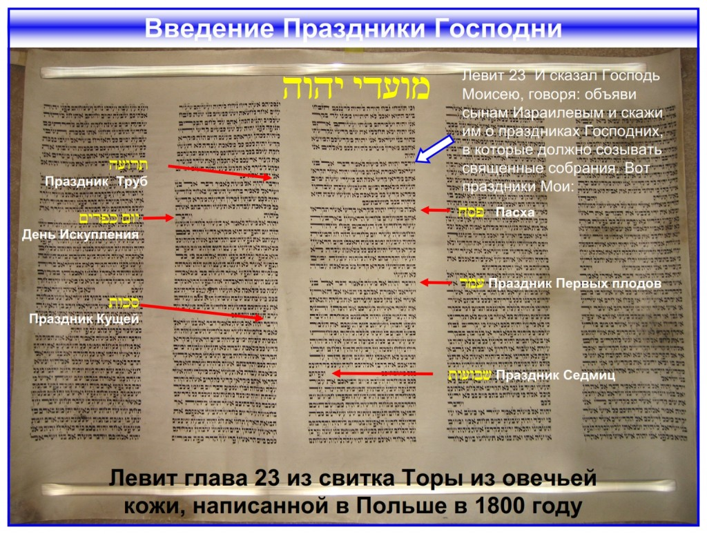 The Feasts of the Lord Leviticus 23 written in a Torah Scroll from Poland - Russian language Bible study