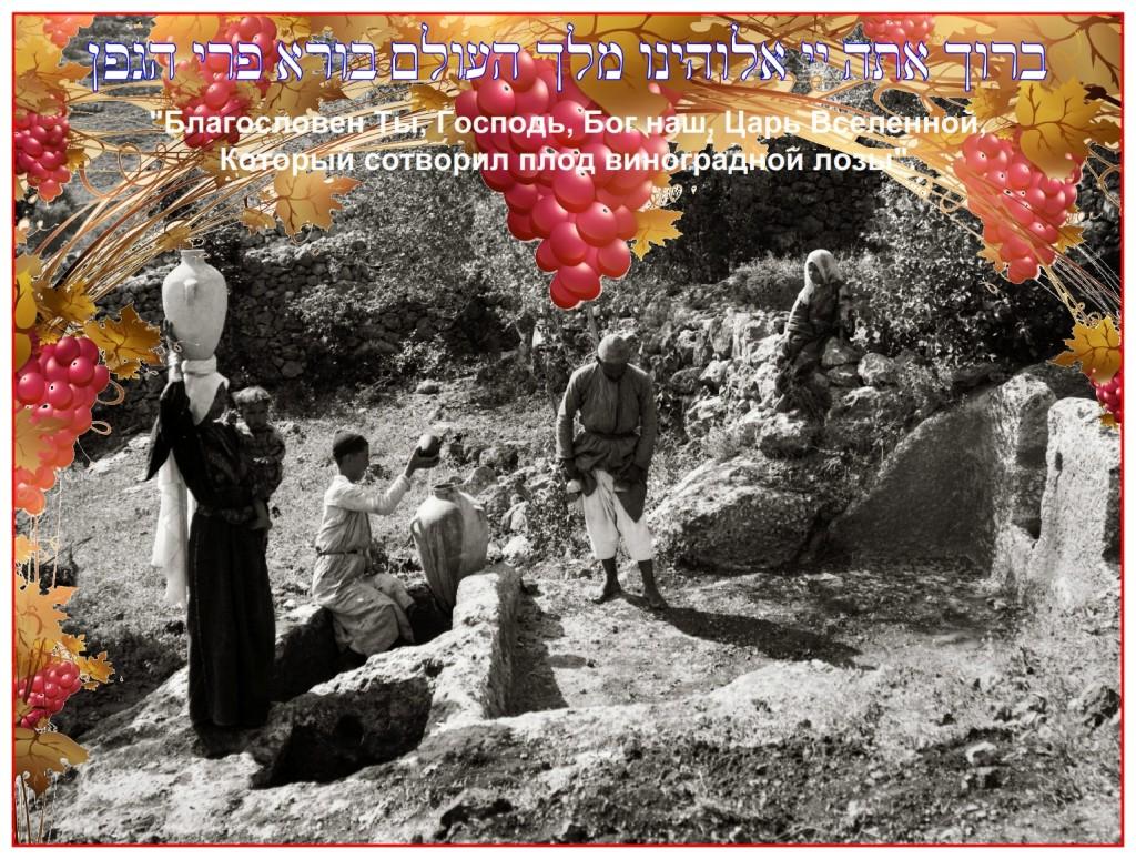 Ancient wine press discovered at Ein Kerem on the west side of Jerusalem Photo 1890