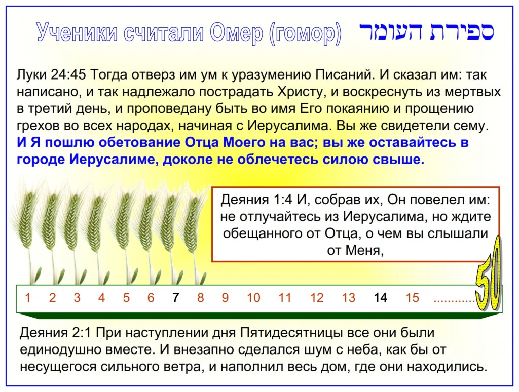 Russian language Bible study: The Disciples knew how to count the days from the Feast of First Fruits to the Feast of Shavuot.