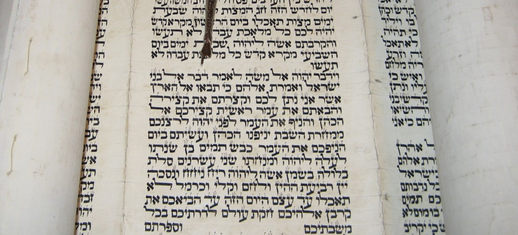 This photograph was taken from a Torah Scroll written in Morocco on goat skin. The yad (pointer) is indicating the verse Leviticus 23:10