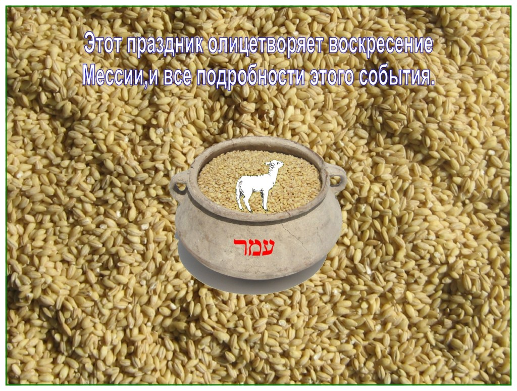 The Lamb of God brought the omer from the barley harvest to the Father. He had to go to Paradise to get it.