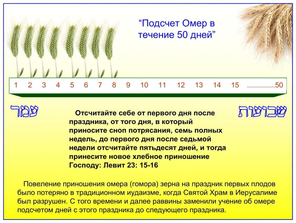 Russian language Bible study: The counting of the days between the offering of the omer to the feast of Shavuot is called counting the omer. Many Jewish people practice this each year.
