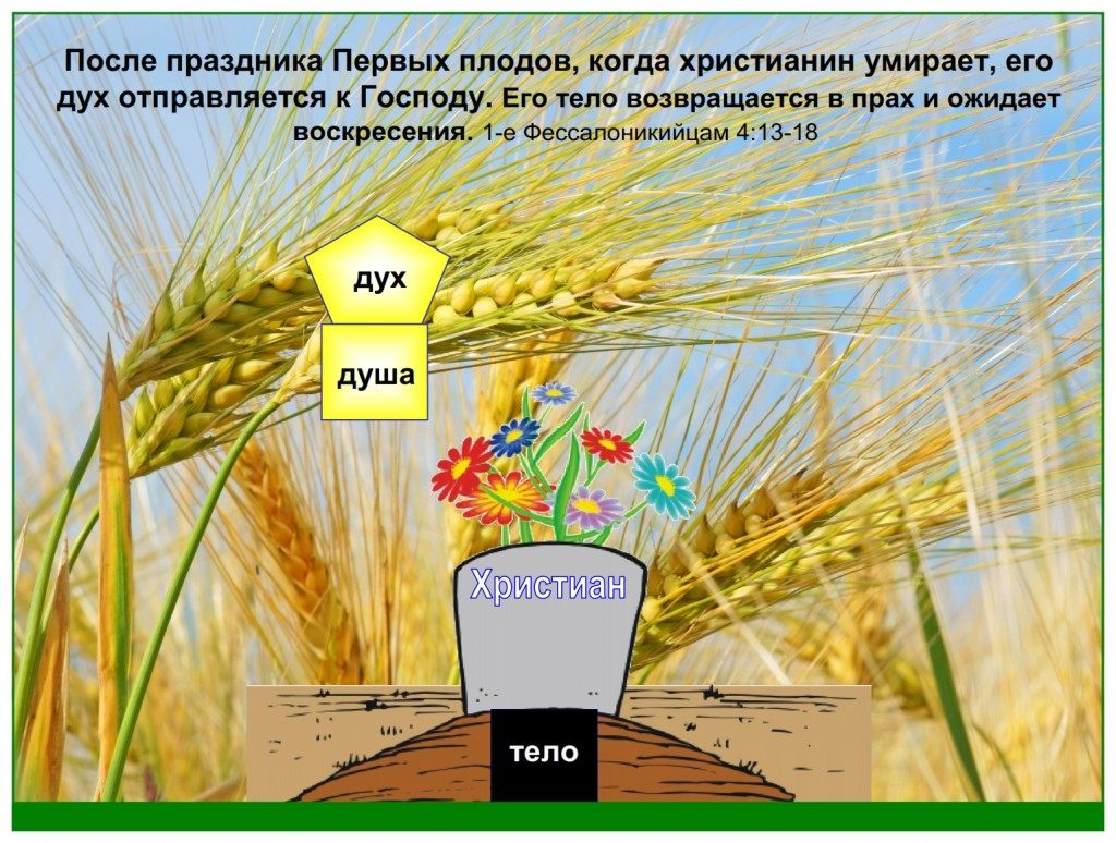 When a believer dies today their spirit goes to the Father to await the resurrection
