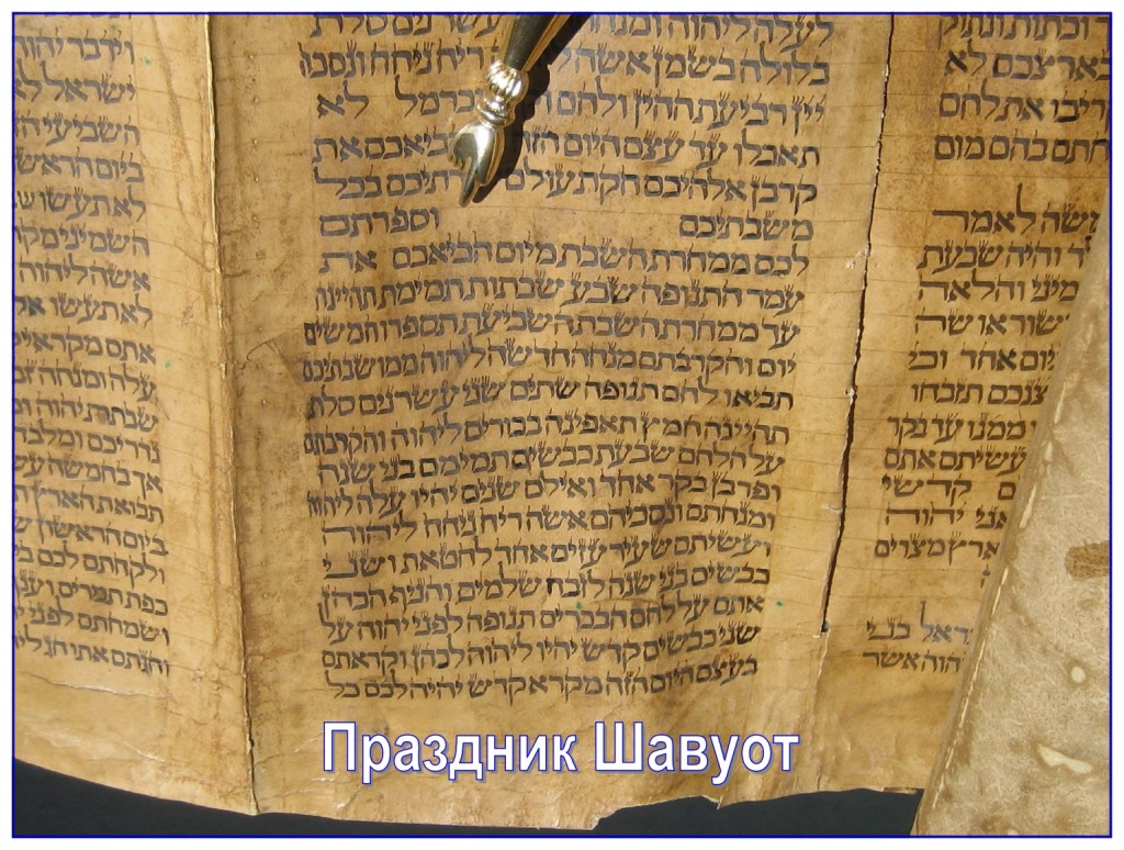 The yad, pointer, is indicating where the Feast of Shavuot begins in the Torah. This Scroll was written in the 1800s on deer skin in Iraq.
