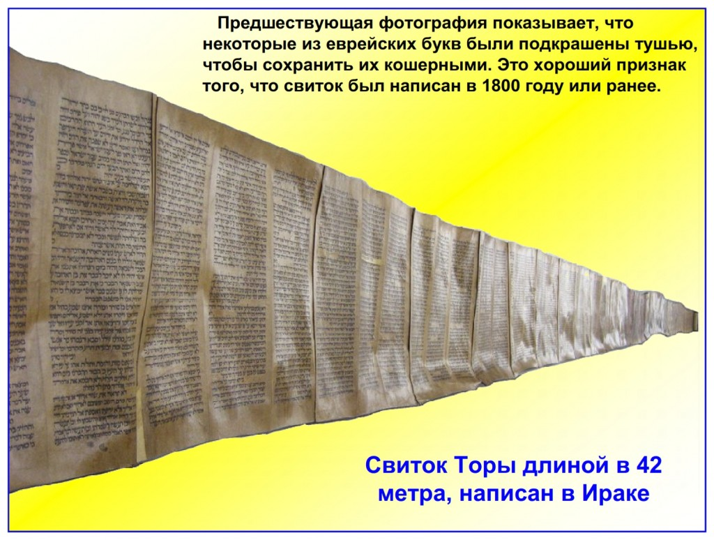 Russian language Bible study: This is the longest Torah Scroll we have had in The Scriptorium. It is 138 feet long and The feasts of Leviticus 23 are found near the middle of this Scroll. This is the longest Torah Scroll we have had in The Scriptorium. It is 138 feet long and The feasts of Leviticus 23 are found near the middle of this Scroll.