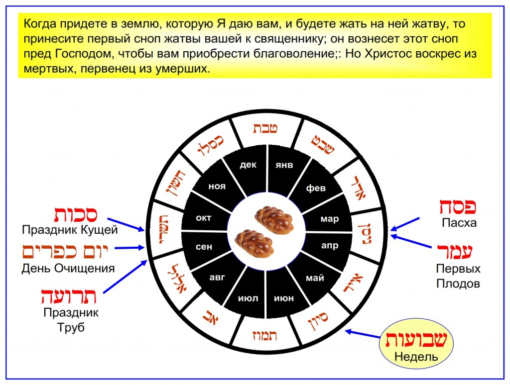 Russian language Bible study: This Hebrew English calendar wheel shows the months in which each feast occurs.