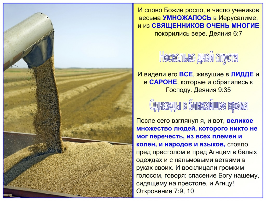 Russian language lesson: The harvest started moving from town to town, region to region, country to country, language to language throughout the world.