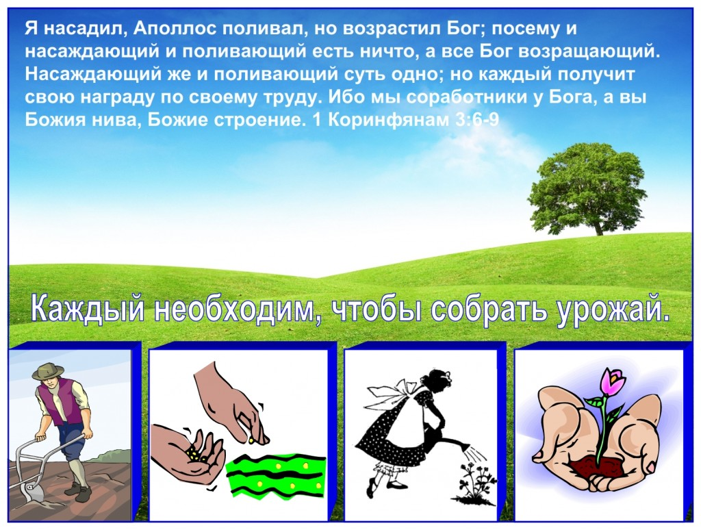 Russian language lesson: We are all very important in the harvest. Everyone is necessary to produce a harvest.