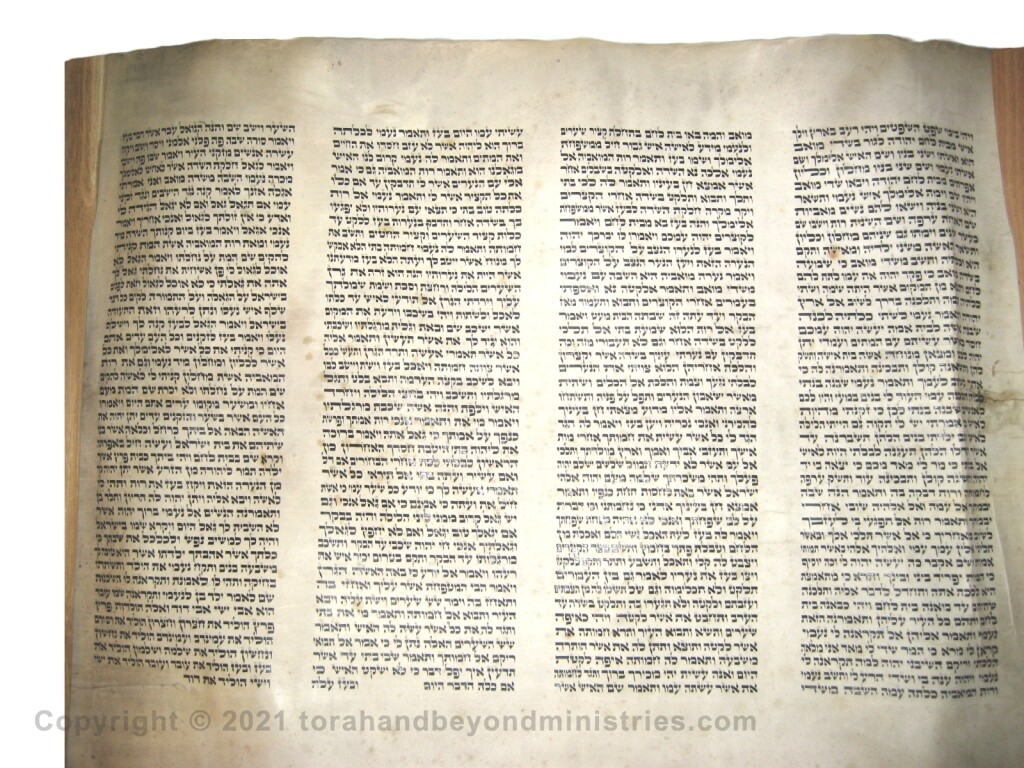 Authentic Hebrew Scroll of Ruth
