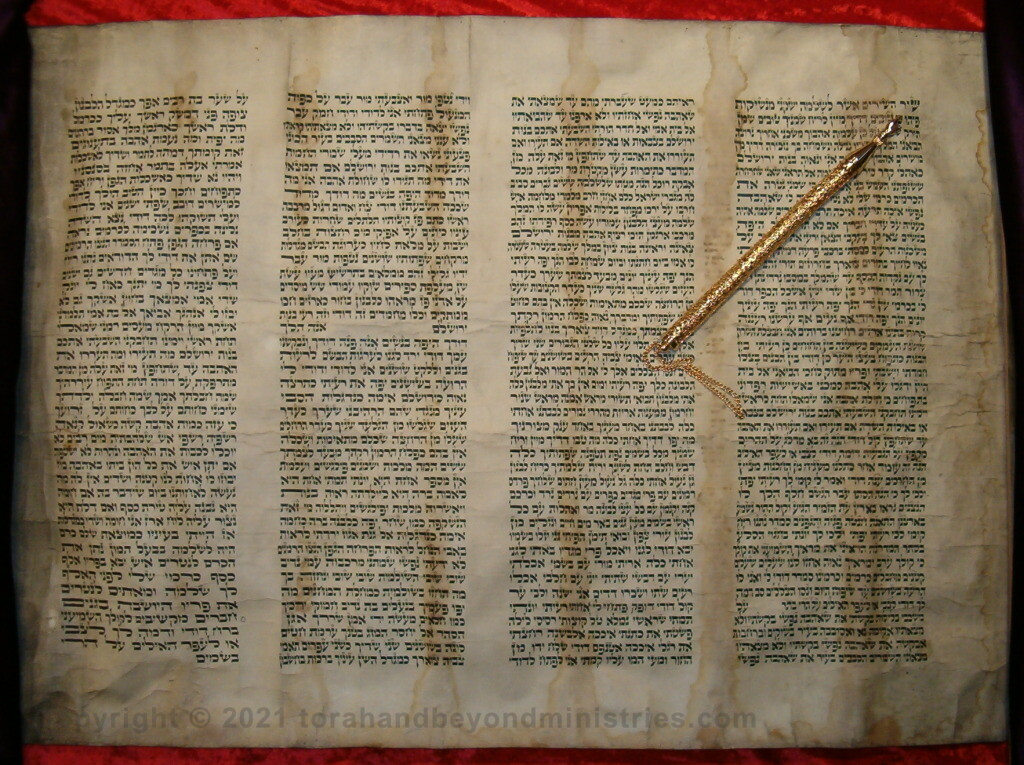 Authentic Hebrew Scroll of Song of Songs
