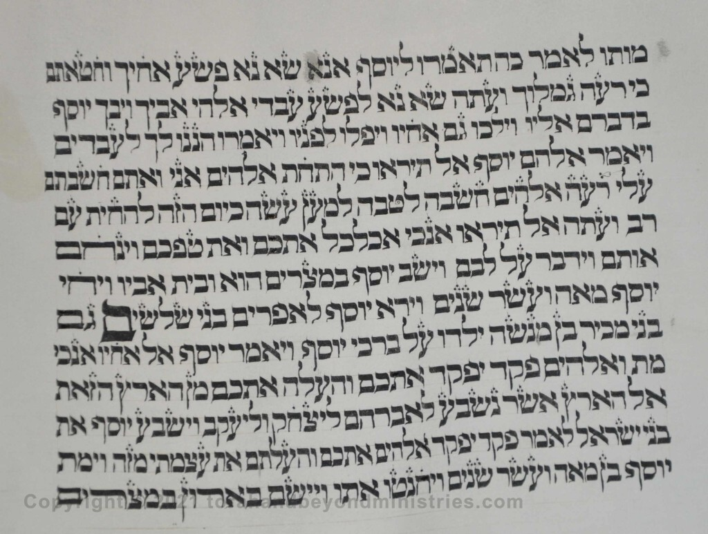 Sheet 12 Genesis 50:23 third generation - Torah from Lithuania written in the 16th century