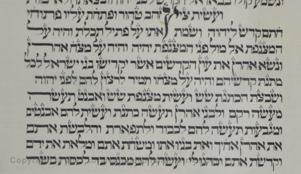 Sheet 19 Exodus 38:36 plate - Torah from Lithuania written in the 16th century