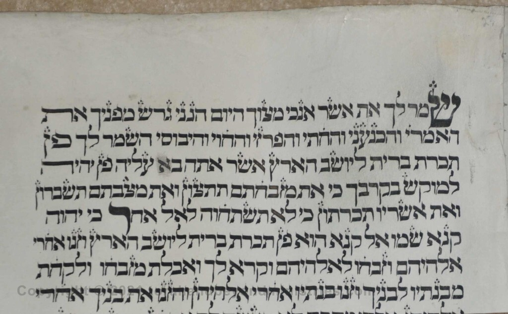 Sheet 21 Exodus 34:11 observe - other - Torah from Lithuania written in the 16th century