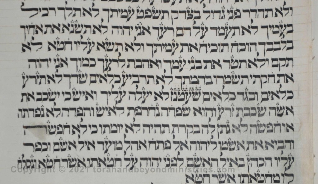 Sheet 30 Leviticus 19:19 linen and woolen - Torah from Lithuania written in the 16th century