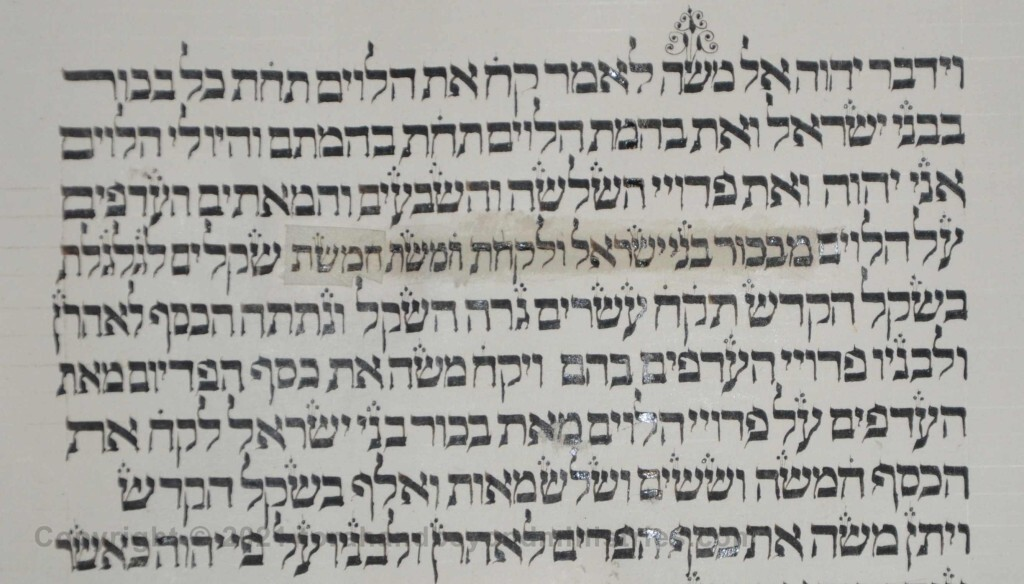 Sheet 33 Numbers 3:44 Moses - Torah from Lithuania written in the 16th century