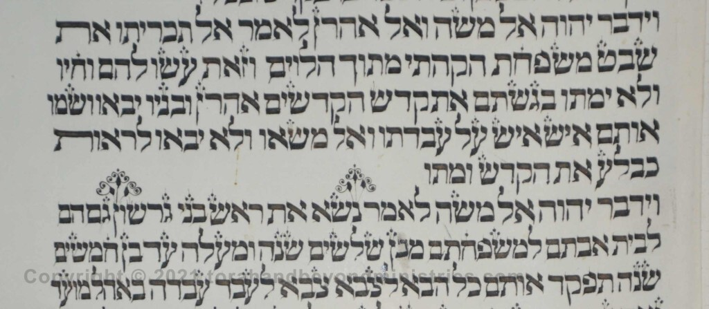 Sheet 34 Numbers 4:22 Take_Gershon - Torah from Lithuania written in the 16th century