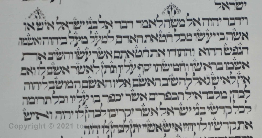 Sheet 34 Numbers 5:5 Moses, man - Torah from Lithuania written in the 16th century