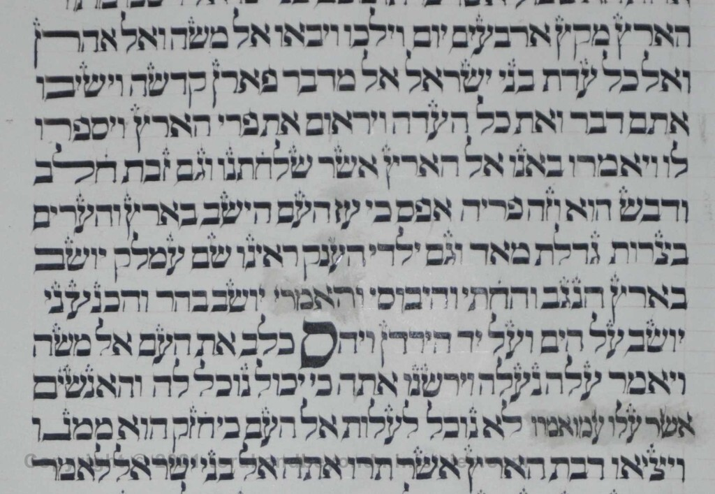Sheet 37 Numbers 13:30 silenced - Torah from Lithuania written in the 16th century