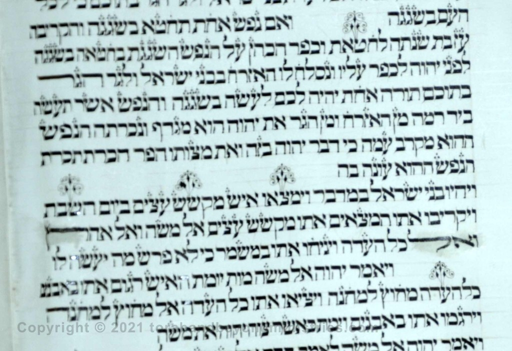 37 Sheet Numbers 15:27 sin, found, gathered, Sabbath, Congregation - Torah from Lithuania written in the 16th century