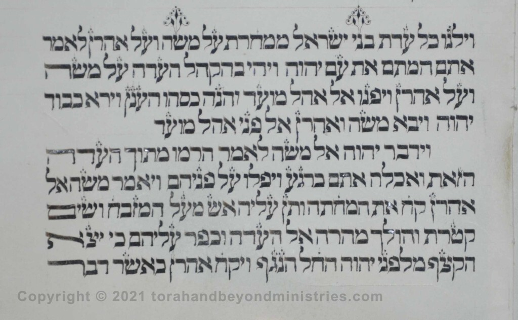 Sheet 38 Numbers 16:41 children, Moses - Torah from Lithuania written in the 16th century