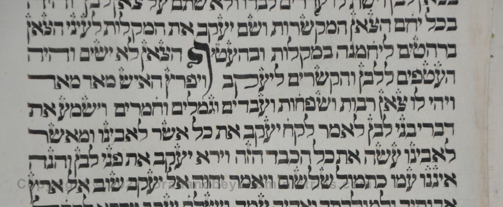 sheet 7 Genesis 30:42 feeble - Torah from Lithuania written in the 16th century