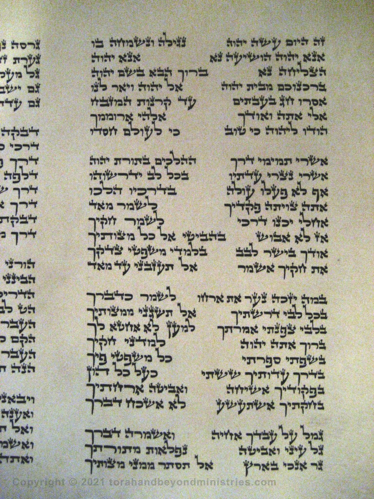 Photograph of the Scroll of Psalms showing Psalm 119 verses 1 through 19 showing the alef, bet, gimel