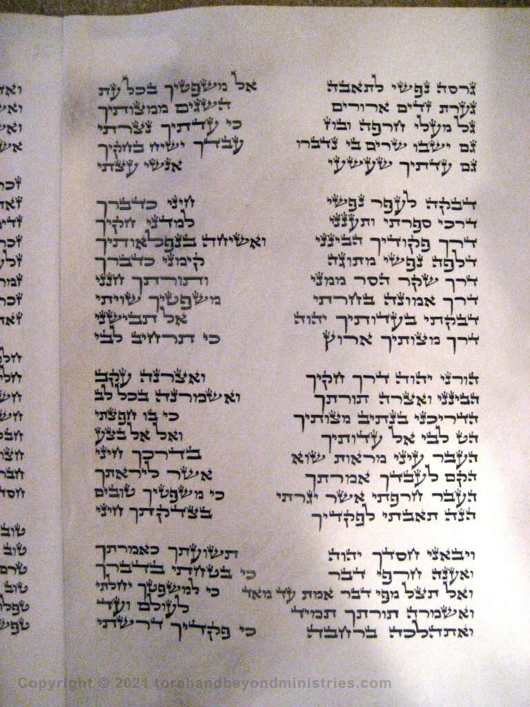 Photograph of the Scroll of Psalms showing Psalm 119 verses 20 through 45 showing the gimel, dalet, he, vav