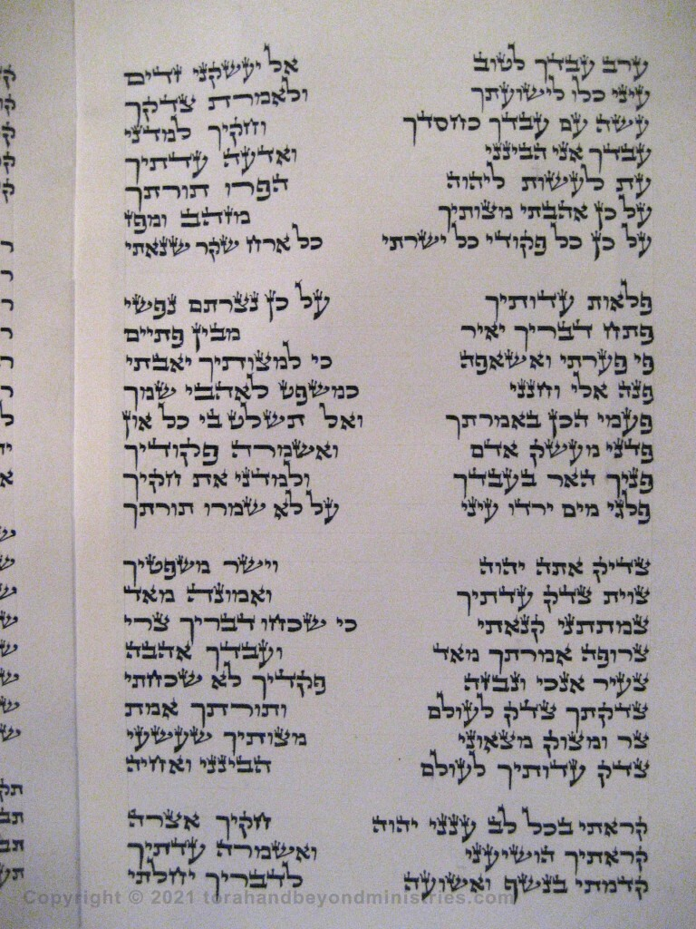 Photograph of the Scroll of Psalms showing Psalm 119 verses 122 through 147 showing the ayin, pe, tzade, qof