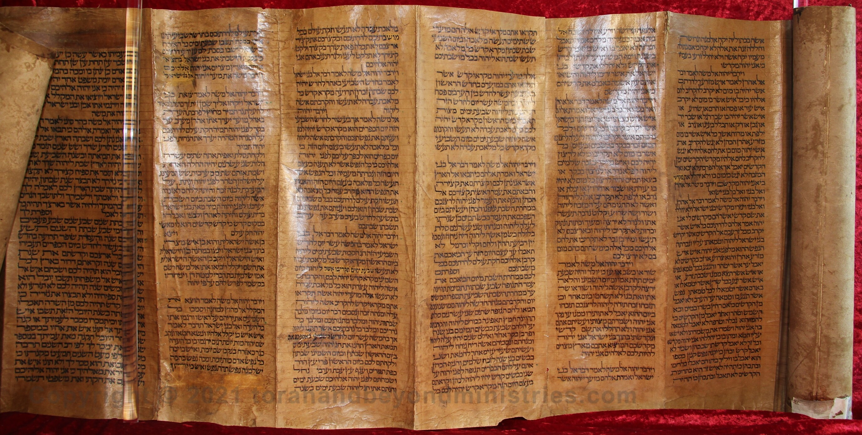 Feasts of the Lord photograph deerskin Torah Scroll Leviticus 23