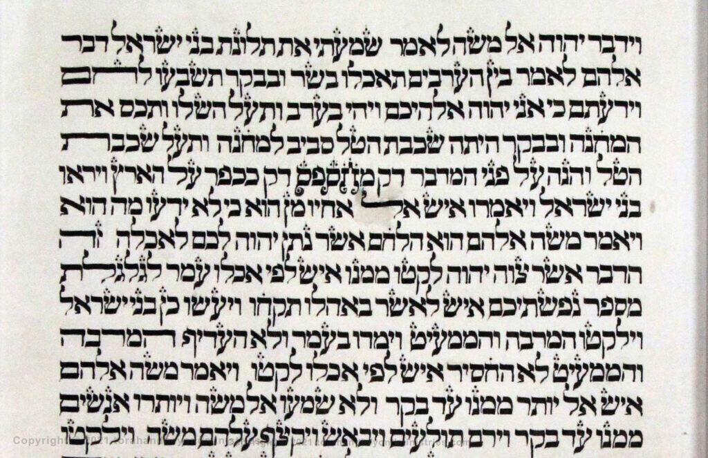 Vilna Torah Scribal oddities Exodus l6 verse 14