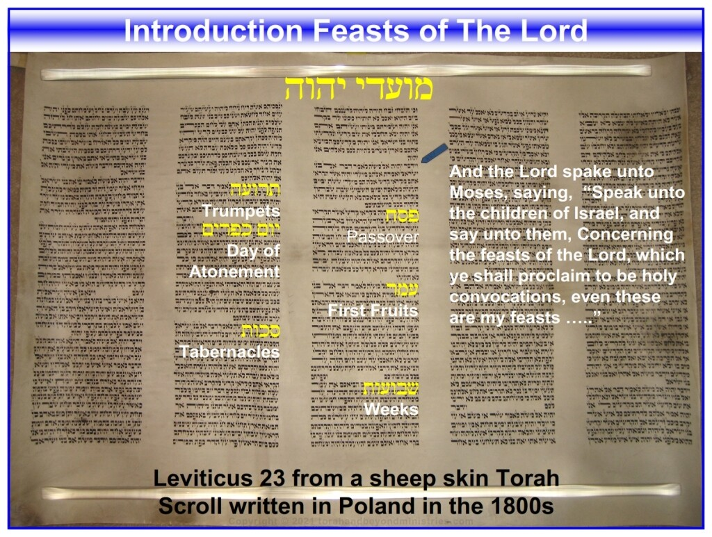 Leviticus23 Hebrew Jewish clip art