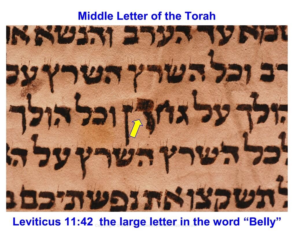 Middle Letter of Torah Hebrew Jewish clip art
