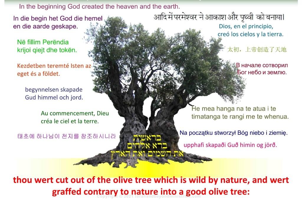 The good Olive Tree Hebrew Jewish clip art