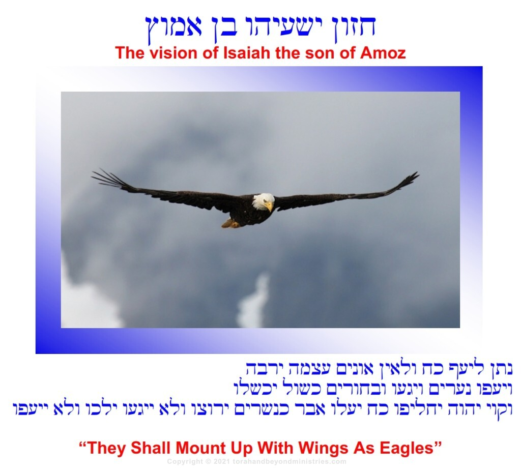 Isaiah 40:31 But they that wait upon the LORD shall renew their strength; they shall mount up with wings as eagles;