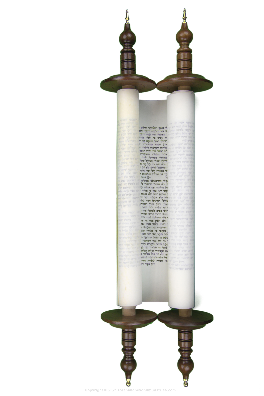 Very rare Hebrew Scroll of Job 1 1125